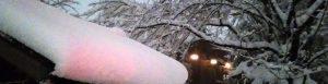 氷川神社の雪